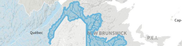 Parution du «Bilan des menaces sur le fleuve St-Jean» par WWF-Canada