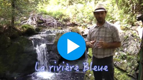 À la découverte de la rivière Bleue