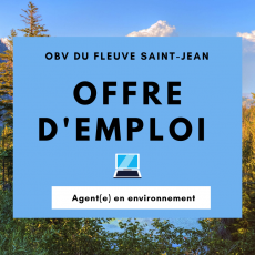 Offre emploi agent environnement