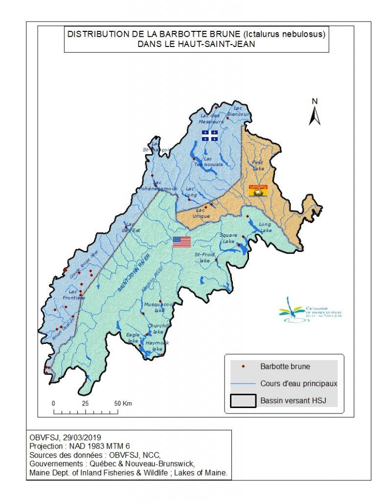 Distribution de la barbotte brune dans le bassin versant du fleuve St-Jean