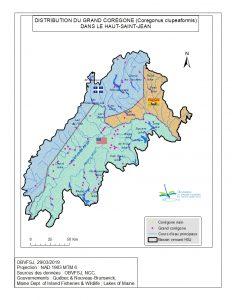 Distribution du Grand Corégone dans le bassin versant du fleuve St-Jean
